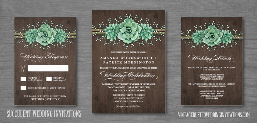Succulent wedding invitations with baby's breath, twine and barn wood